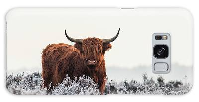 Furry Photographs Galaxy Cases