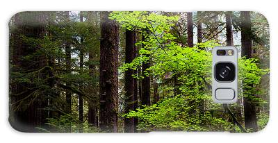 Olympic National Park Galaxy Cases
