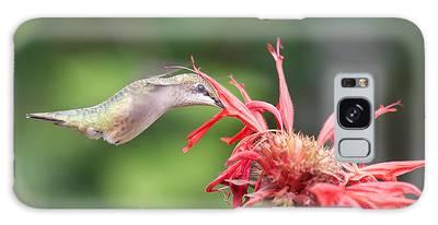 Hummingbird Defying Gravity Galaxy Case