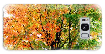 Galaxy Case featuring the photograph Leaves Changing Colors by Cynthia Guinn