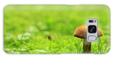 Lonesome Wild Mushroom On A Lush Green Meadow Galaxy Case