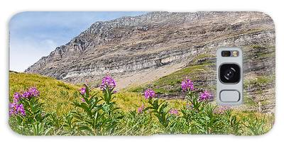 Meadow Of Fireweed Below The Continental Divide Galaxy Case