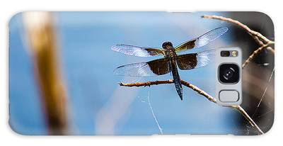 Merrill Creek Dragonfly Galaxy Case