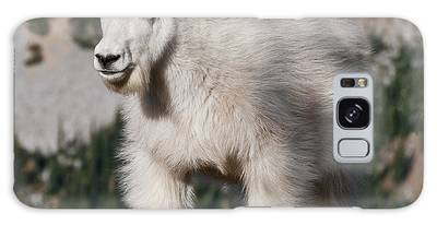 Mountain Goat Kid Standing On A Boulder Galaxy Case