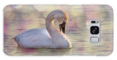 Galaxy Case featuring the photograph Shy Swan by Patti Deters