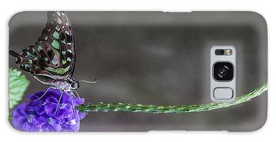Galaxy Case featuring the photograph Butterfly - Tailed Jay II by Patti Deters
