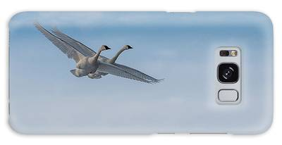 Galaxy Case featuring the photograph Trumpeter Swan Tandem Flight I by Patti Deters