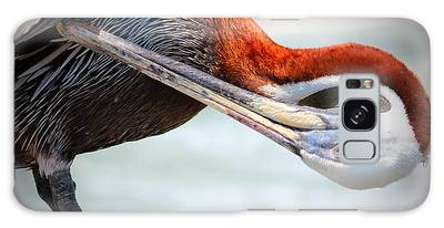Galaxy Case featuring the photograph Pelican Itch by Cynthia Guinn