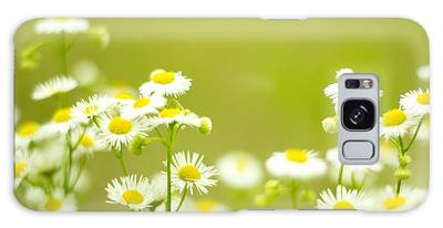 Philadelphia Fleabane Wildflowers In Soft Focus Galaxy Case
