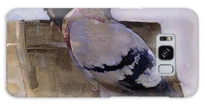 Pigeon Galaxy Cases