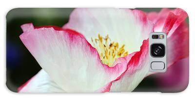 Pink-fringed Poppy Galaxy Case