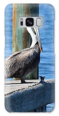 Posing Pelican Galaxy Case