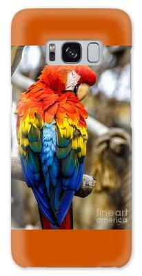 Preening Scarlet Macaw Galaxy Case