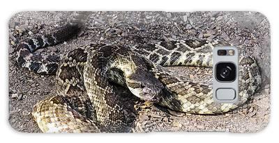 Rattlesnake Galaxy Case