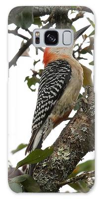 'red-bellied Woodpecker' Melanerpes Carolinus  Galaxy Case