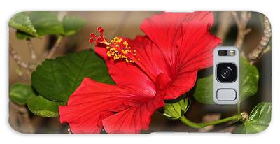 Galaxy Case featuring the photograph Red Hibiscus Flower by Cynthia Guinn