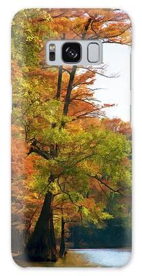 Big Cypress Swamp Galaxy S8 Cases