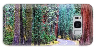 Sequoia Hwy Galaxy Case
