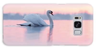 Swan Galaxy Cases