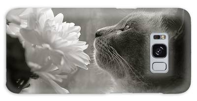 Siamese Cat With Flowers Galaxy Case