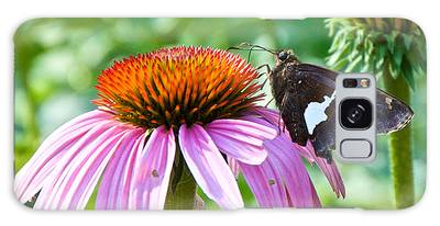Silver-spotted Skipper And Echinachea Galaxy Case