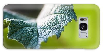 Slice Of Leaf Galaxy Case