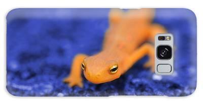 Salamander Galaxy Cases