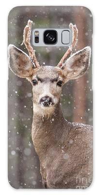 Snow Deer 1 Galaxy Case