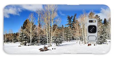 Snowy Aspen Grove Galaxy Case