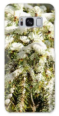 Snowy Pines Galaxy Case