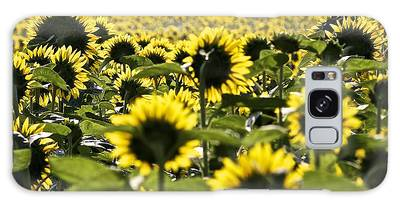 Sunflower Field Galaxy Case