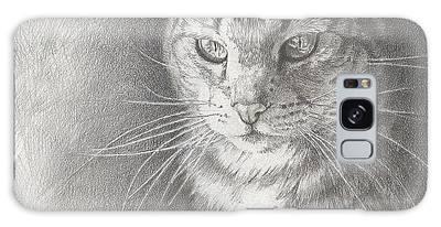 Sunlit Tabby Cat Galaxy Case