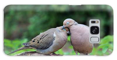 Galaxy Case featuring the photograph Two Turtle Doves by Cynthia Guinn