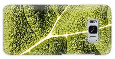 Veins Of A Leaf Galaxy Case