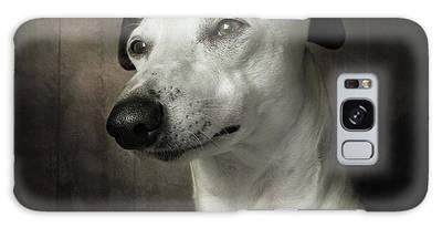 Sighthound Galaxy Cases
