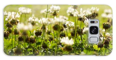 White Dutch Clover Wild Plants In The Sunshine Galaxy Case