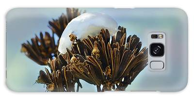 Winter Agave Bloom Galaxy Case