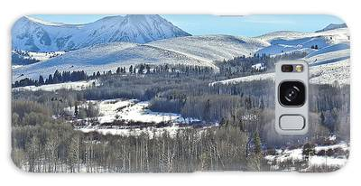 Winter Evening Aspen Galaxy Case