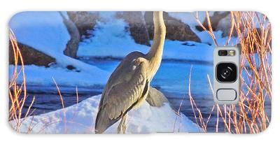 Wintering Walker River Heron Galaxy Case