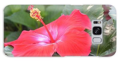 Hibiscus Flower Galaxy Case