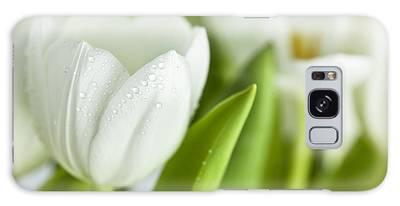 Designs Similar to White Tulips by Nailia Schwarz