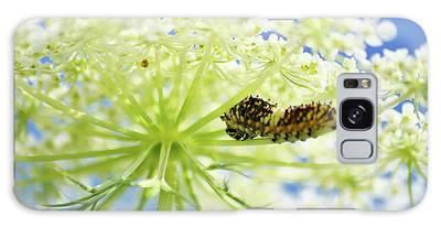 A Caterpillars Palace Galaxy Case