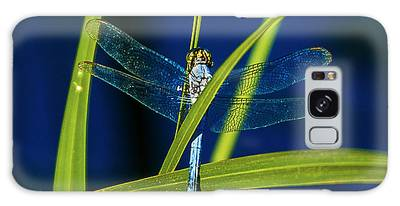 Brilliant Dragon Fly Galaxy Case