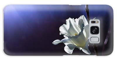 Daffodils Galaxy Cases