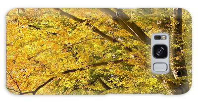 Golden Autumn Galaxy Case