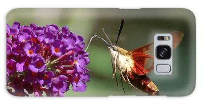 Hummingbird Moth Galaxy Case