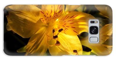 Illuminated Yellow Alstromeria Photograph Galaxy Case
