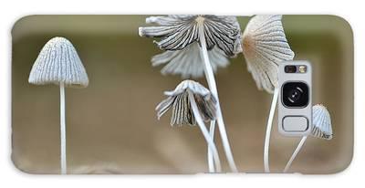 Ink-cap Mushrooms Galaxy Case