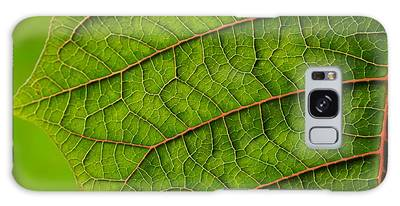 Poinsettia Leaf I Galaxy Case