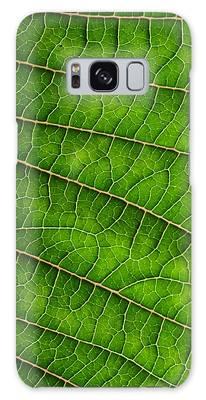 Poinsettia Leaf IIi Galaxy Case